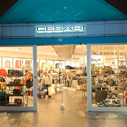 Cesari Luggages Bags & Accesories